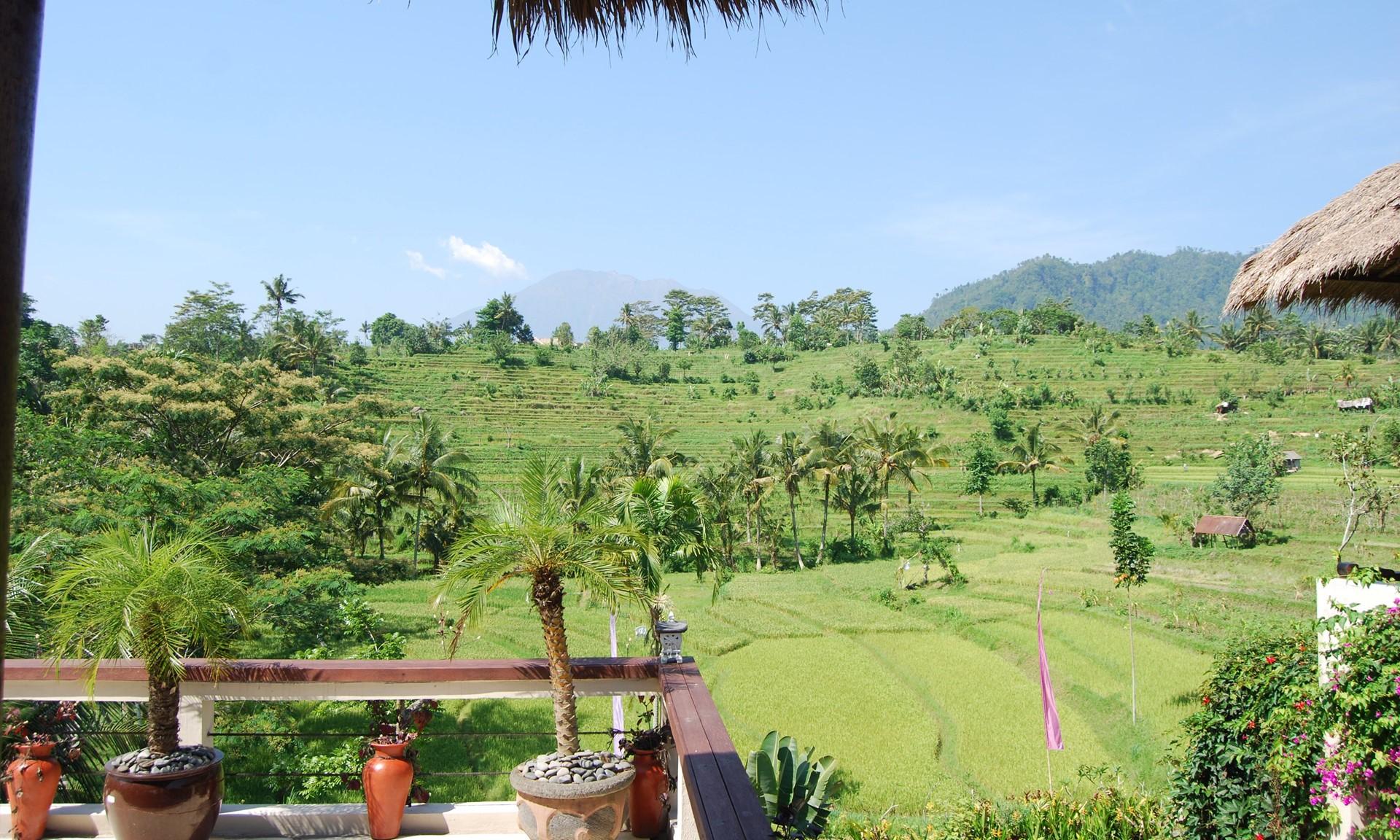 Surya Shanti Villa Indonesia Ampersand Travel