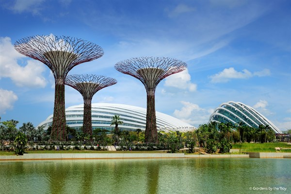 SINGAPORE Gardens By The Bay Supertrees And Conservatories