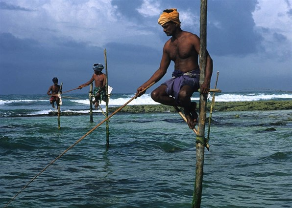 Sri Lanka Stilt Fisherman (1)
