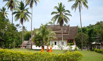 Laos Luang Prabang Temple Monks Palms