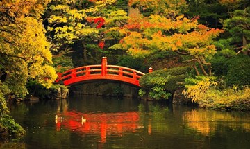 JAPAN Inspiration Gallery 8