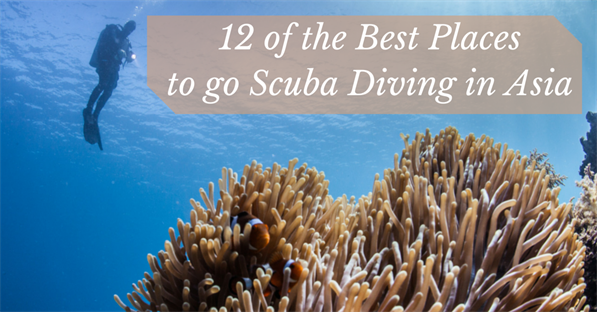 5 of the World's Cheapest Places to Get Scuba Certified