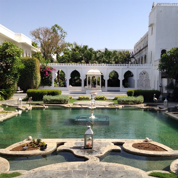 Blog Lily Pond Taj Lake Palace