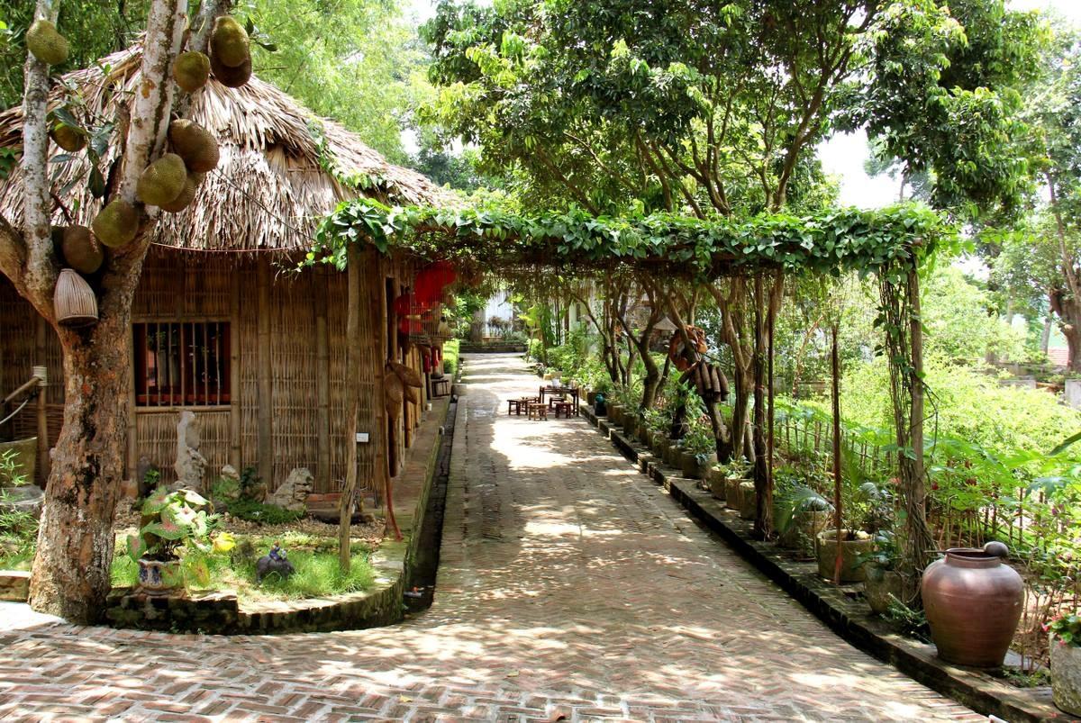 Attractive Vietnam Garden Image Collection - Beautiful Garden ...
