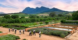 Babylonstoren Winelands South Africa 9