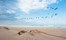 Hoanib Skeleton Coast Skeleton Coast Namibia 80