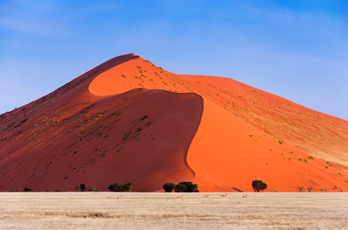 Namibia: An Ageless Land