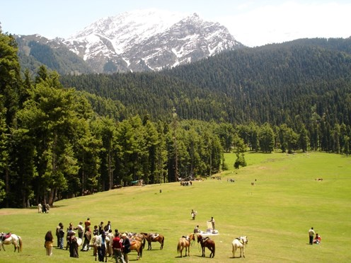 Kashmir - Paradise on Earth: An Insider's Guide