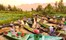 Floating Market, Dal Lake, Srinagar, Kashmir, North India.jpg